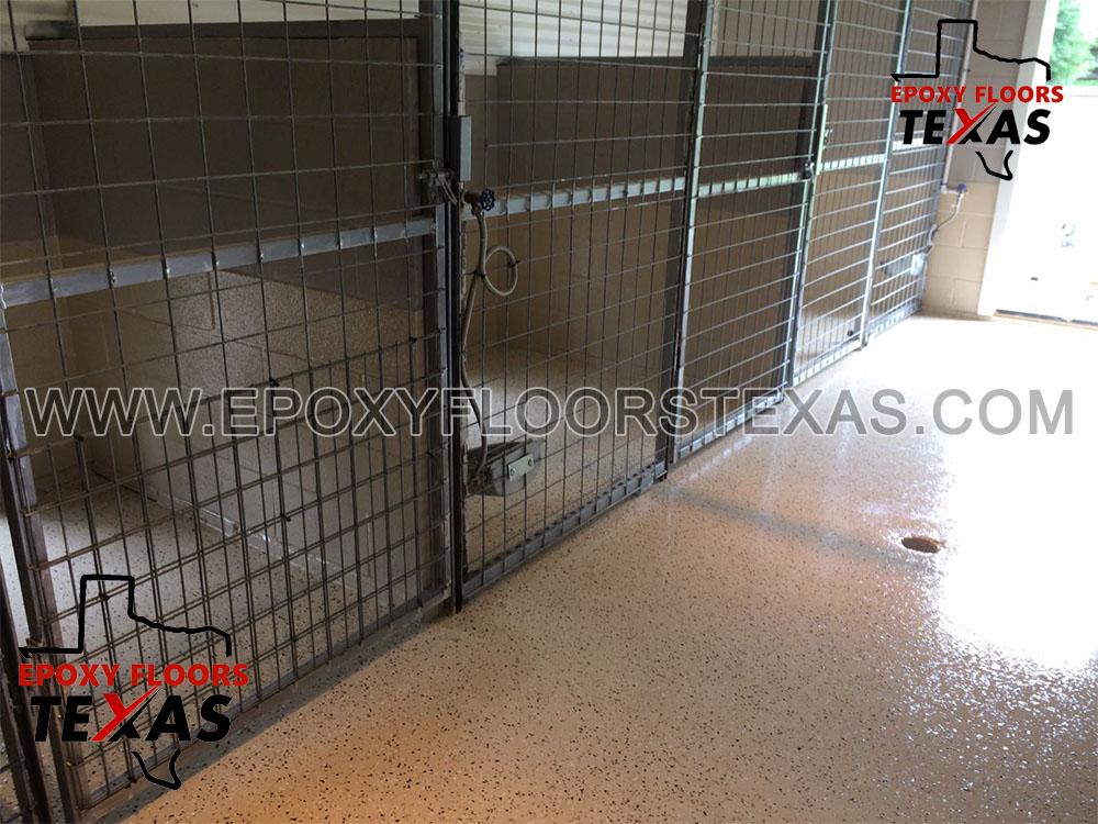 Pet Care Facility
